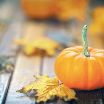 Fall Events in the Navy Yard