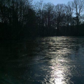 Anacostia River Explorers RiverSmart Educational Boat Tours
