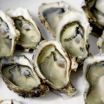 Don't Miss the Delicious DC Oyster Festival