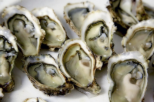 This Weekend in DC: The Oyster Wars Seafood Festival!